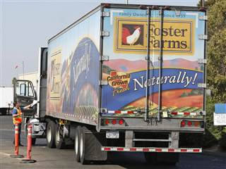 Foster Farms truck courtesy of NBC news